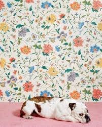 Catherine Ledner.: Floral Wallpapers, Catherine Ledner, Ledner Bulldogs, Wall Paper, English Bulldogs, Pet, Decor Inspiration, Half Walls, Catherine Animal