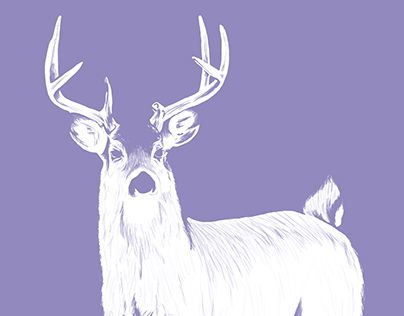 """Check out new work on my @Behance portfolio: """"Deer"""" http://be.net/gallery/37777557/Deer"""