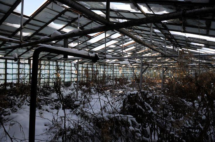 スクルンダ1はラトビアのリガ近郊の町であり、冷戦中にはレーダー施設が置かれていた。レーダーは1998年に稼働停止し、1999年に町はゴーストタウンとなった。
