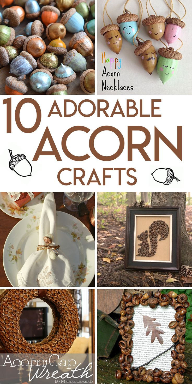 10 adorable acorn crafts for fall
