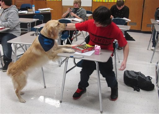 Schools give stressed-out students therapy dogs, yoga (Photo: Martha Irvine / AP)