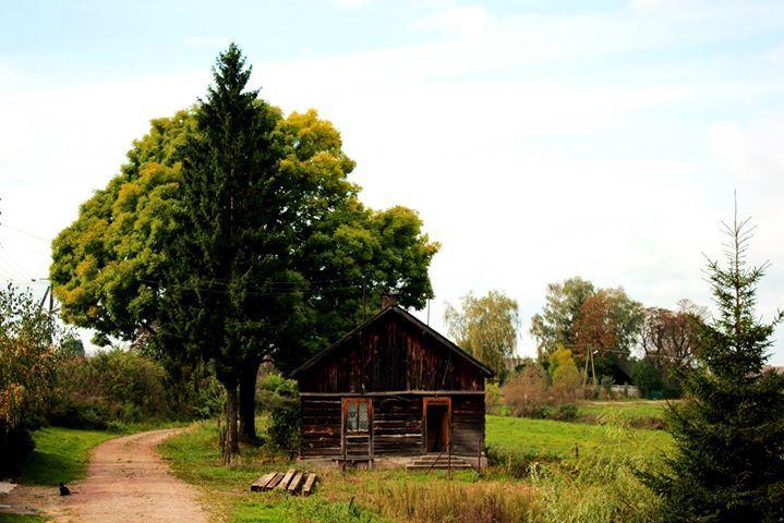 Kargoszyn, Ciechanów