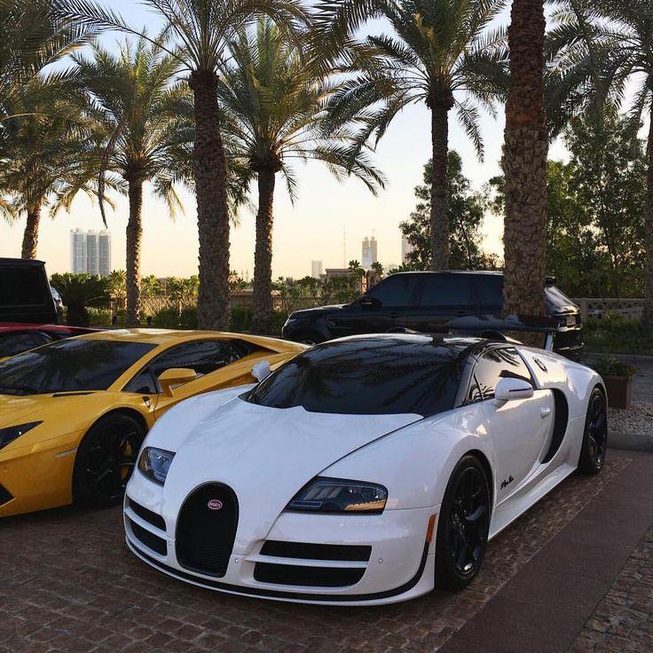 Luxury Blogger | Entrepreneur | Dirty Mind U2022 Business:  Contact@mrgoodlife.co U2022. Bugatti VeyronLamborghiniMontrealEntrepreneurRange  ...