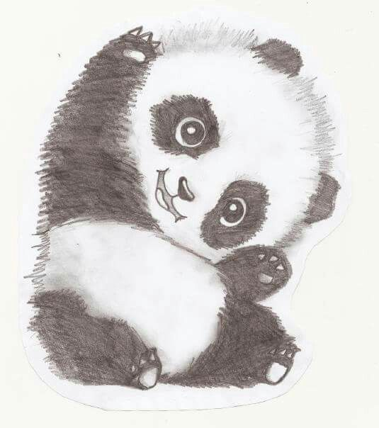 #panda #art #blackandwhite #draw