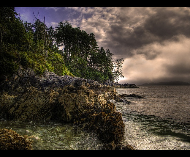 Tonquin Park, Tofino, British Columbia, Canada.  A great place to view nature on the edge.