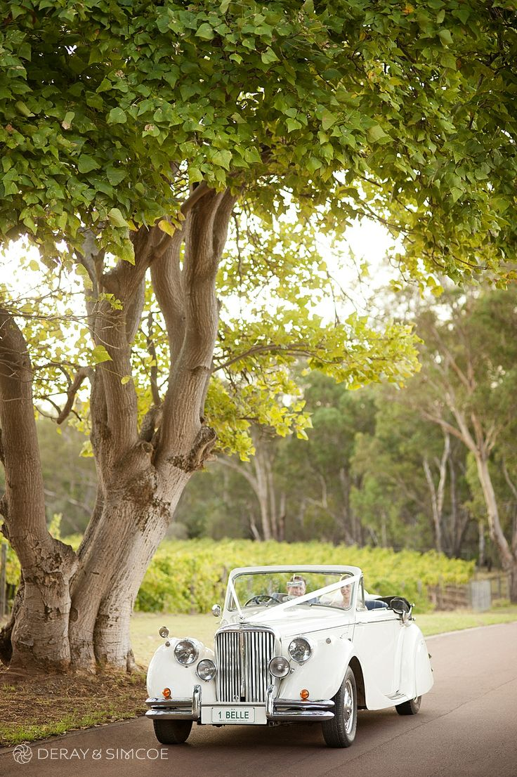 Vintage white wedding car in the Swan Valley Western Australia Photography by DeRay & Simcoe
