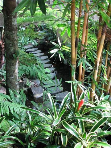 Tropical landscape, Bali, Indonesia. Photo by Taryn Koerker