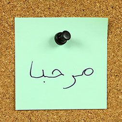 Learning outcome: - Understand the Arabic alphabet; - Learn how to pronounce Arabic words; - Learn how to read and write basic Arabic sentences; - Learn