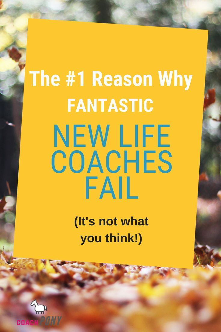 How Much Do Life Coaches Really Make? (Here's Why Most Coaches ...