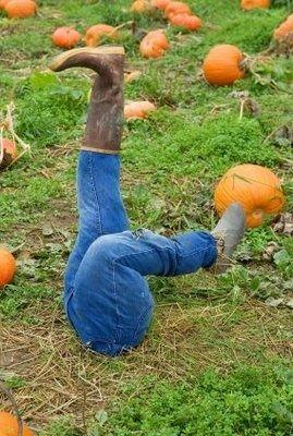 Diy scarecrow halloween pinterest - Deco jardin halloween ...