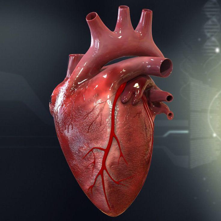 Картинки человеческого сердца с надписями, делать открытку своими