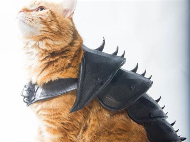 Heck Yeah, Battle Cats: 3-D Print Your Own Cat Armor