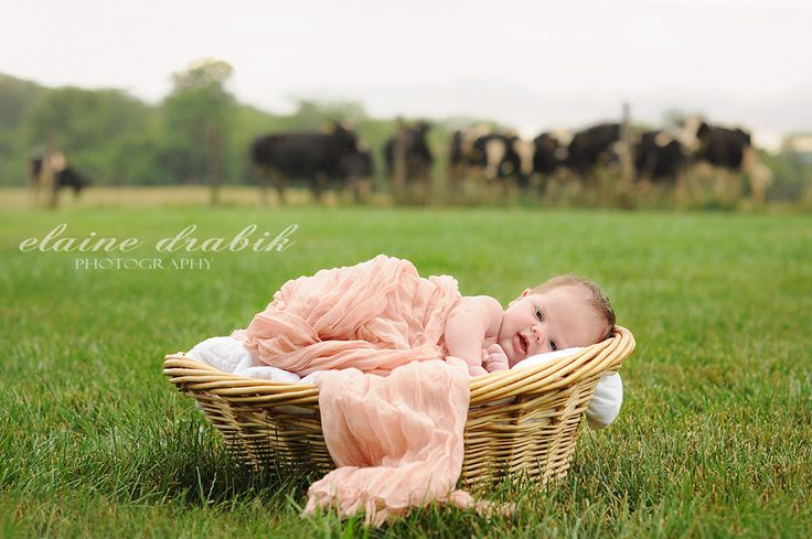 Edit of Newborn Baby on a Farm | MCP Show and Tell Click to see before & after images
