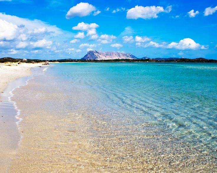 Rondreis Sardinië  Ontdek de schoonheid van dit karakteristieke Italiaanse eiland inclusief 7 11 of 14 nachten in hotels dagelijks ontbijt huurauto en retourvlucht  EUR 459.00  Meer informatie  http://ift.tt/2dVa25d http://ift.tt/28ZoOTw http://ift.tt/1RlV2rB