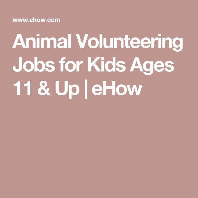 1000+ ideas about Volunteer Jobs on Pinterest | Un volunteer jobs ...
