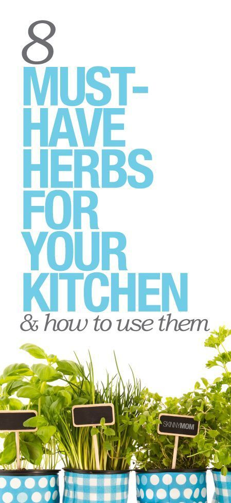 8 herbs you need to always have on hand in your kitchen.