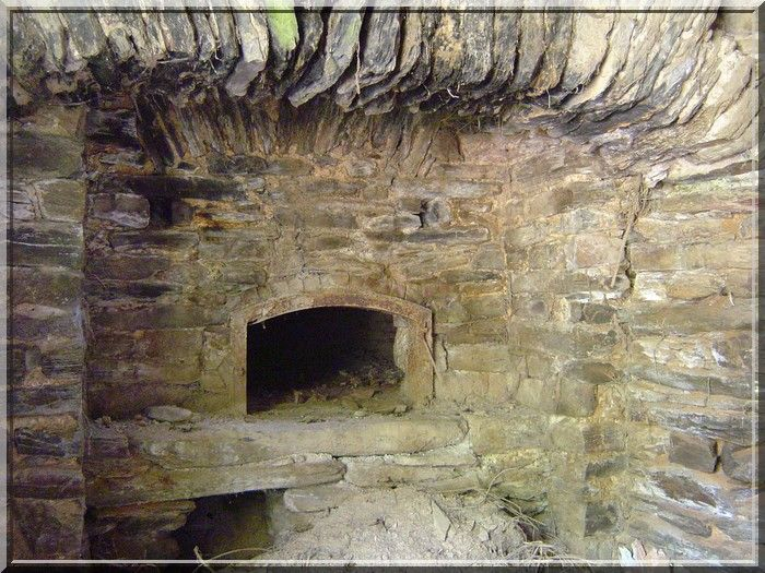 Proche de Sainte Juliette sur Viaur en Aveyron, une ruine se meurt. C'est l'ancien château fort nommé : Le Vieux Canitrot. A coté de la ruine, quelques pans de mur rappellent qu'un village existait. Ce joli four à pain en est un bel exemple.