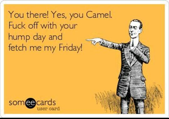 Haha!! Funny ecards. .. fetch me my Friday
