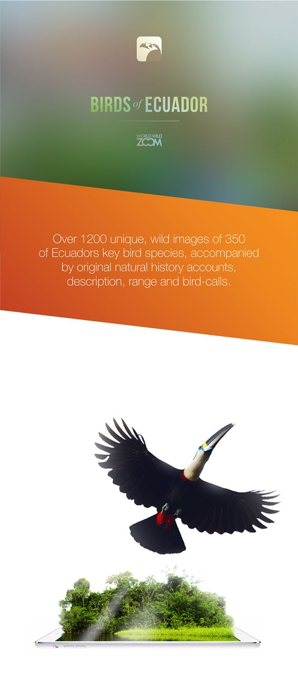 BIRDS OF ECUADOR / APP on Behance