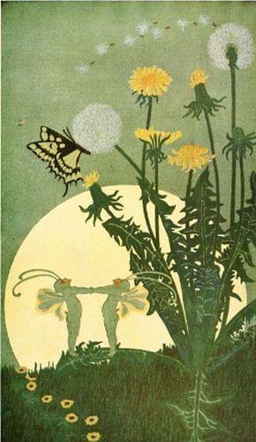 Full moon by Dugald Stewart Walker