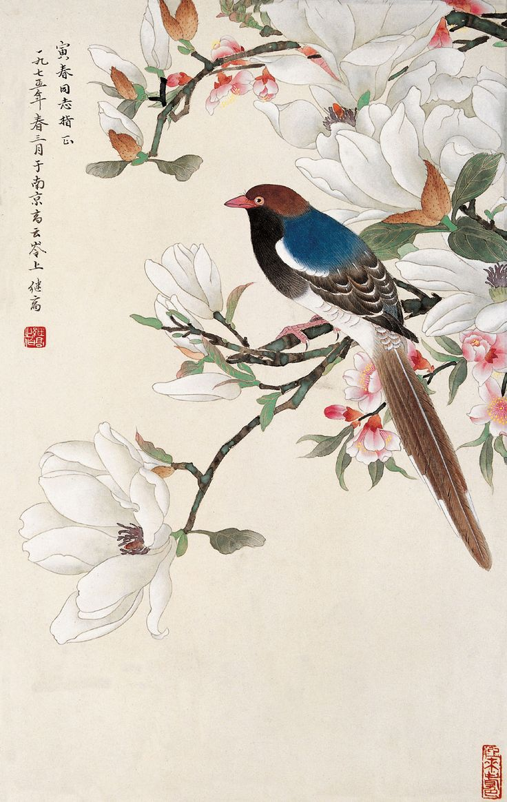 当代画家喻继高工笔花鸟作品选 - 伴月轩主 - 伴月轩主