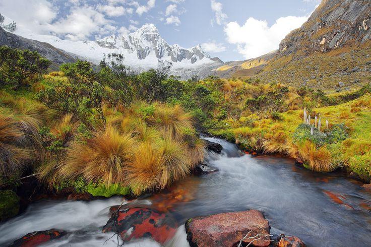 river and vegetation by juan gabaldon on 500px