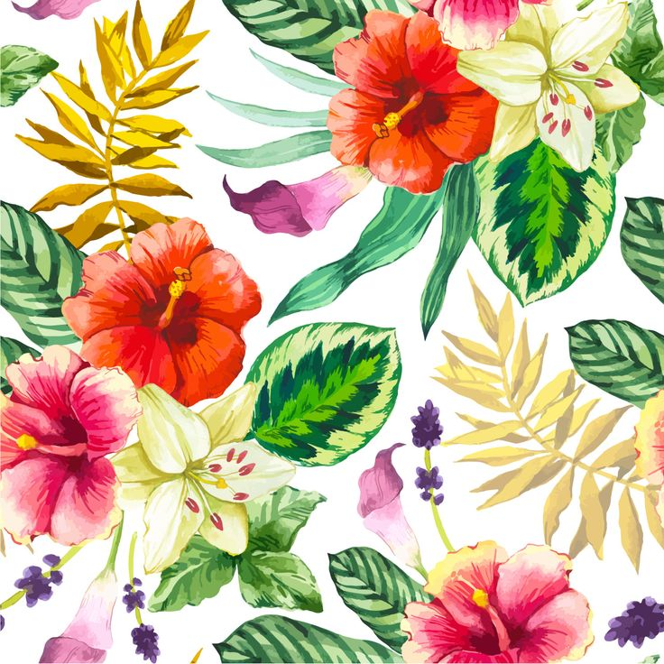 Vector illustration with watercolor flowers. Beautiful seamless background with tropical flowers and plants on white. Composition with calla lily, chinese hibiscus and leaves.