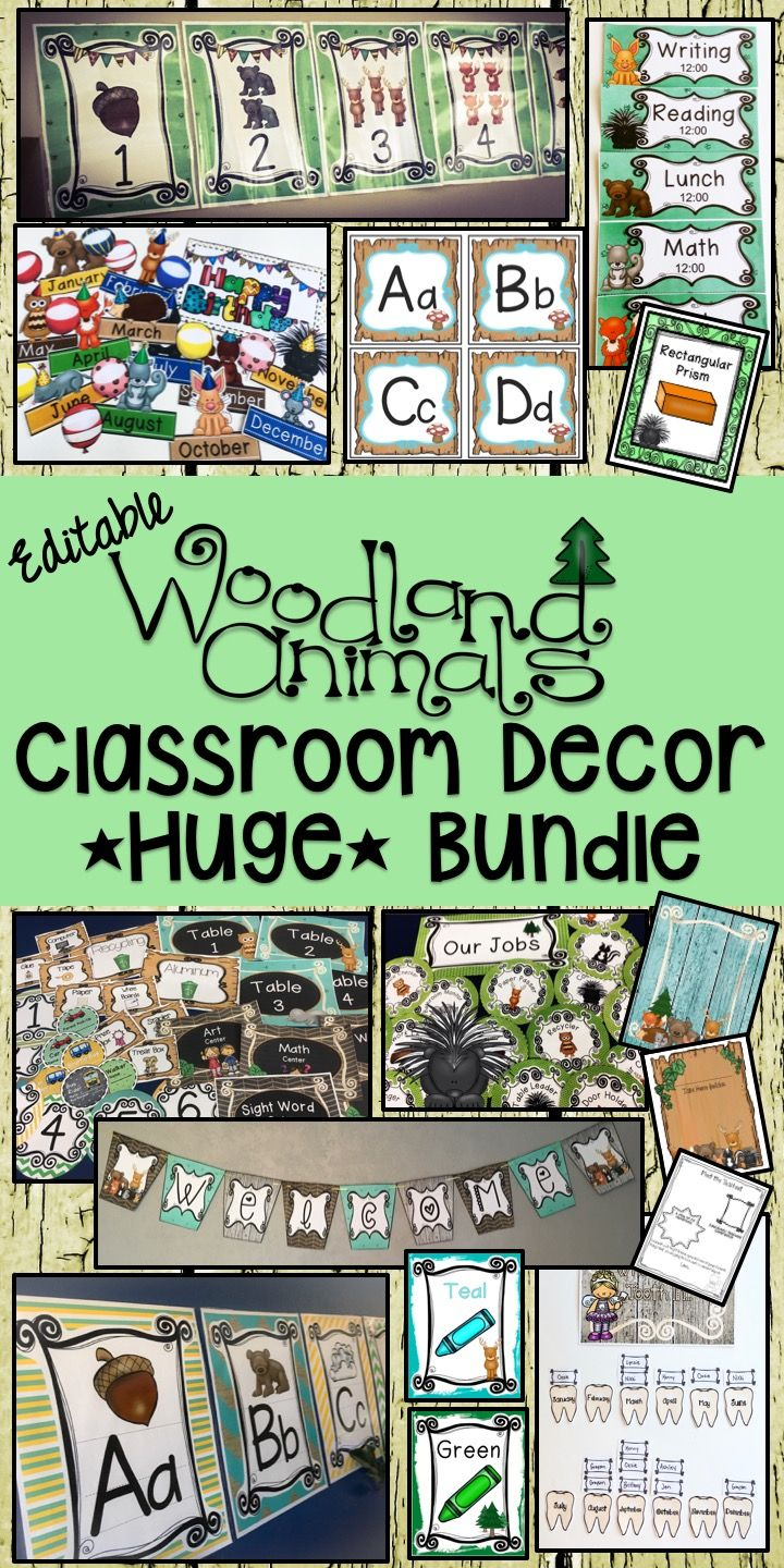Classroom Decor Animals : Best ideas for the classroom grades images on