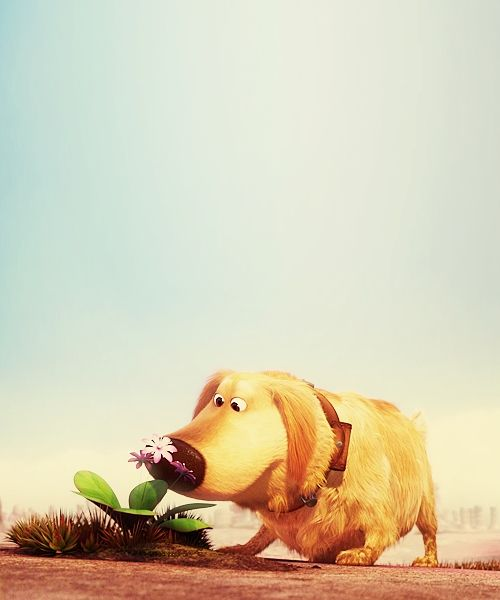 Dug from up! Disney dogs, Disney pixar up, Disney up