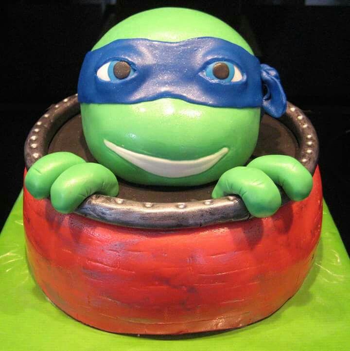 Turtle cake