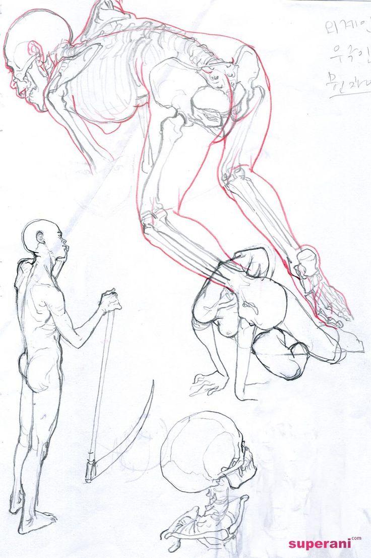 Anatomi Kemikler 51 / Anatomy Bones 51 - The Art of Kim Jung Gi* • Blog/Website…