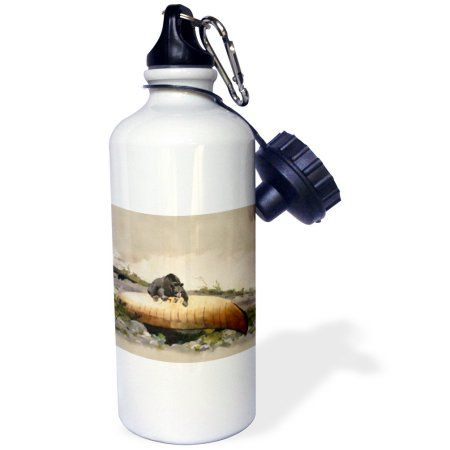3dRose Vintage 1895 Bear Painting by Winslow Home Bear and Canoe, Sports Water Bottle, 21oz, White