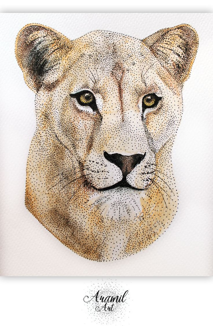 Lioness drawing, created by using about a thousand dots and colored with watercolour pencil. Art by Petra Jánosi. Come and check on FB. :)  https://www.facebook.com/aramilart