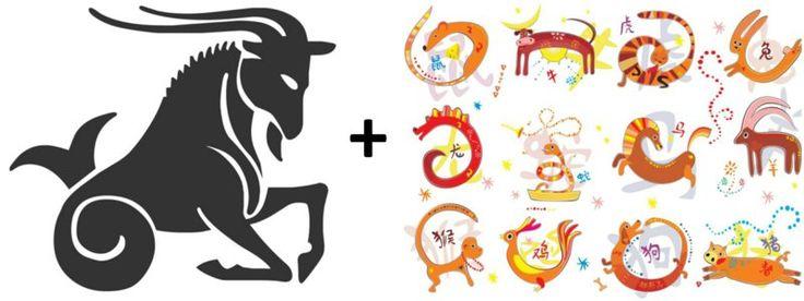 Sternzeichen + Chinesisches Tierkreiszeichen
