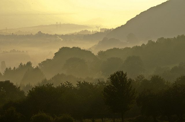 France / Moselle - Countryside in the morning (2008)