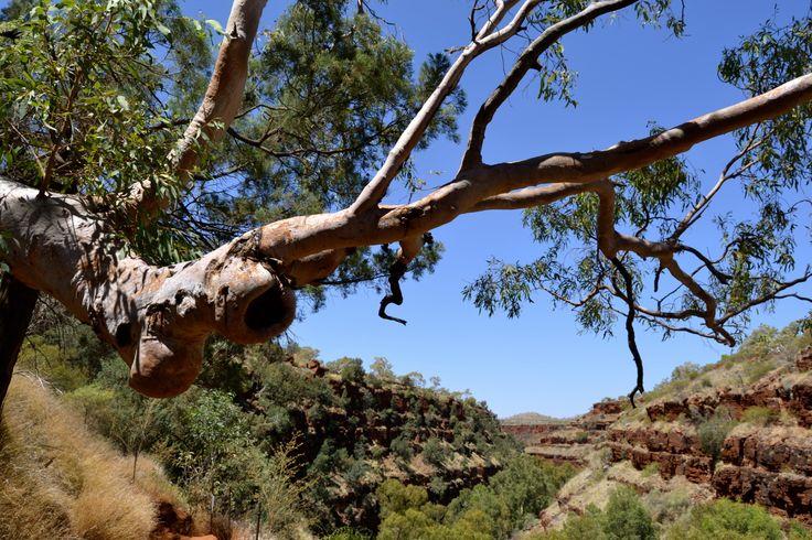 karijini National Park, Wa, Australia