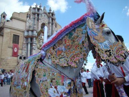 Los caballos del Vino de Caravaca de la Cruz. Del 1 al 5 de Mayo