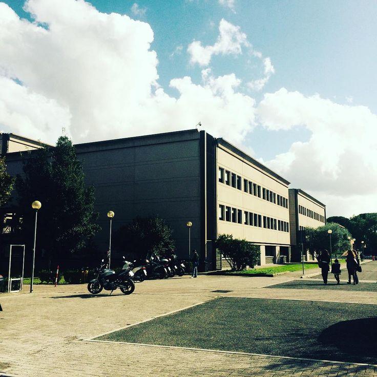 "Autumn at Faculty of Economics, Università di Roma ""Tor Vergata"" .  #torvergata #university #rome #facultyofeconomics #autumn #studyinrome"