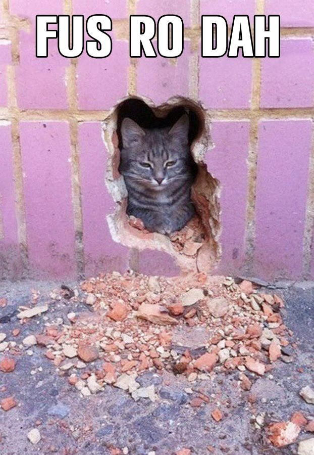 """Dovahkiin Khajiit couriers be like...  """"Got ssomething Khajiit is supposed to deliverr..."""""""