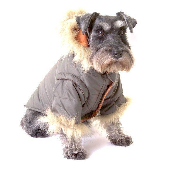 Nosy Dog Parka in Khaki £34.99 #dograincoat #dogcoat #dogclothing