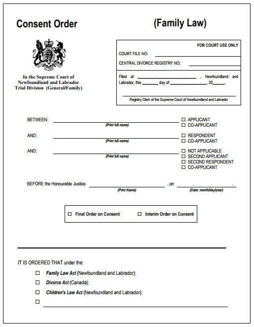 3 Court Consent Order Templates   Free Word  Excel   PDF