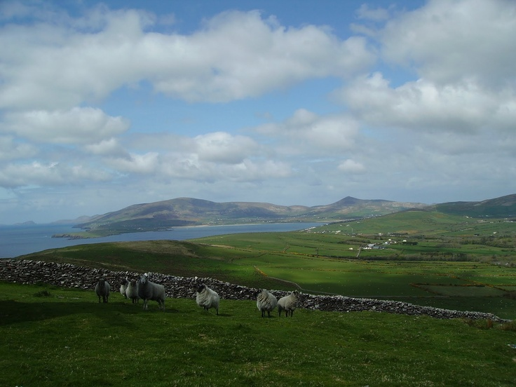 Dingle Bay, Ireland