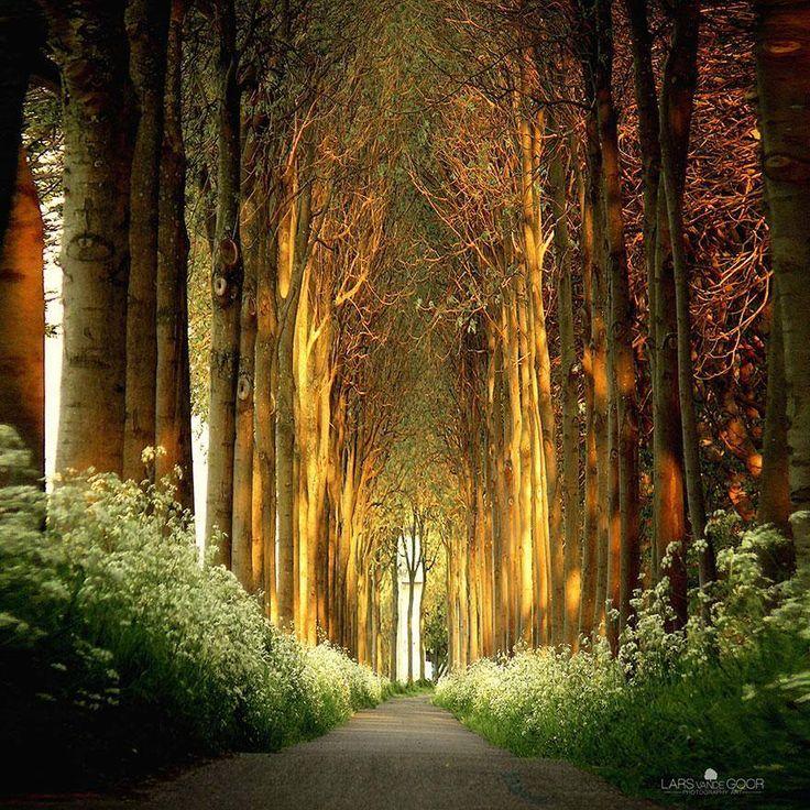 cuidar da luz no caminho...