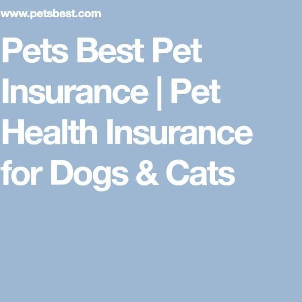 Pets Best Pet Insurance Pet Health Insurance For Dogs Cats In 2020 Pet Insurance Cost Pet Insurance Dog Insurance