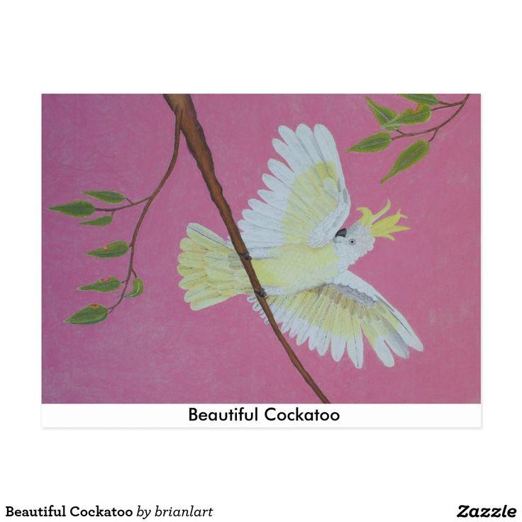 Beautiful Cockatoo