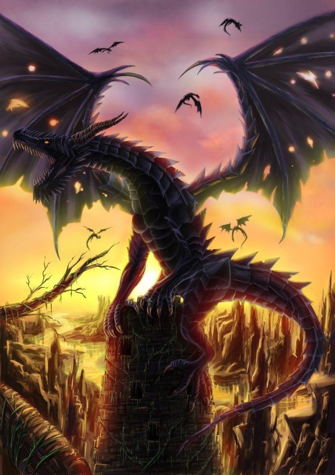 Dragons.