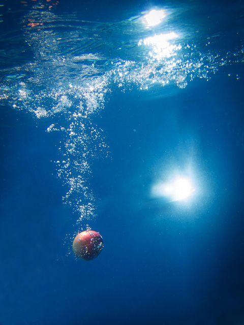 やとさん 葉桜さん 鏡音リン・レン Out of Eden(アウト・オブ・エデン)水中写真