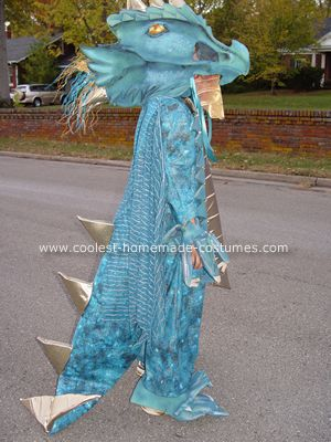 Dragon costume
