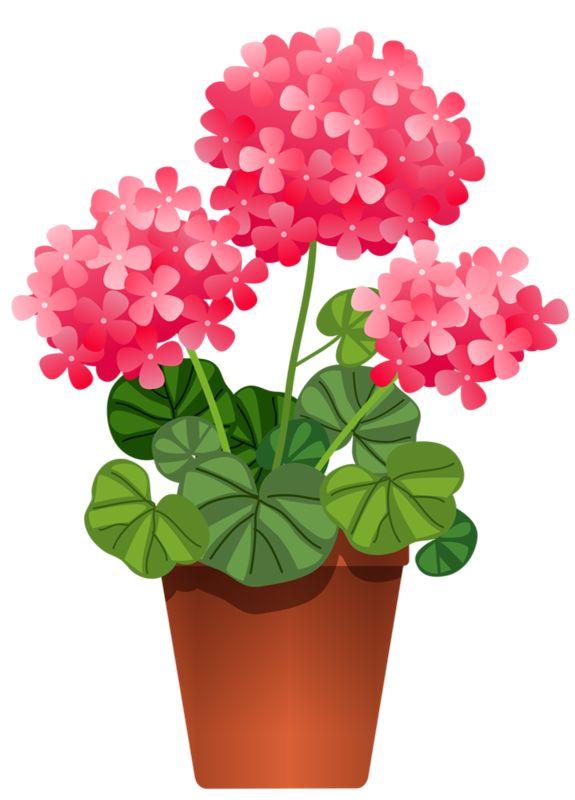 Image result for spring flowers geranium clip art