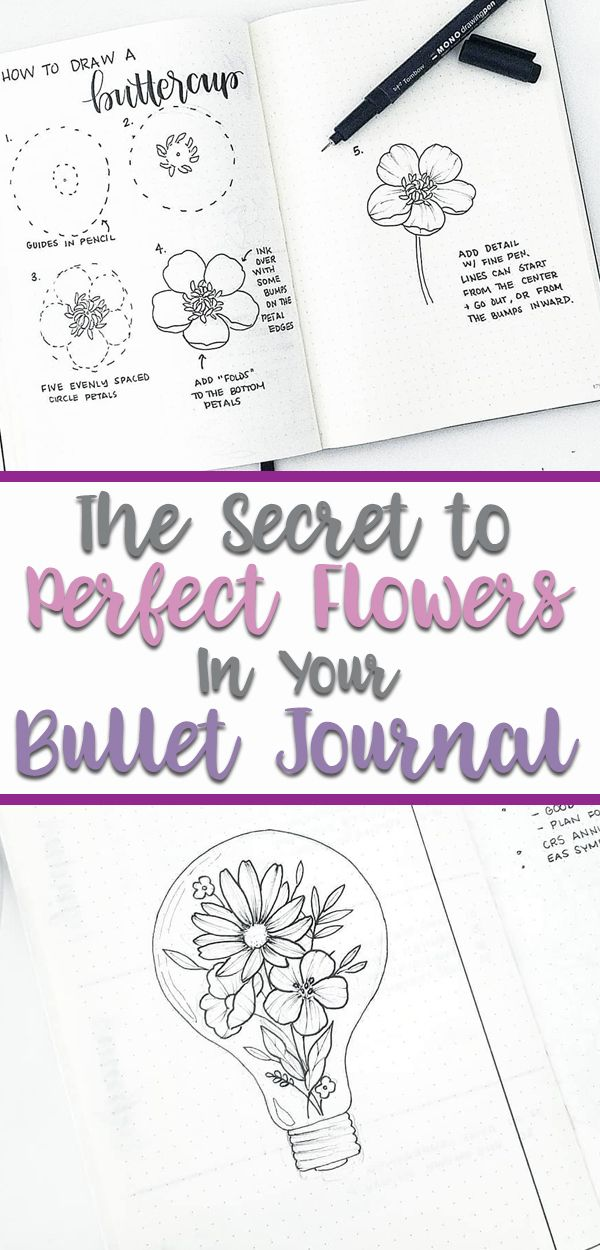 How To Draw Flowers Flower Drawing Tutorials Flower Doodles Easy Flower Drawings
